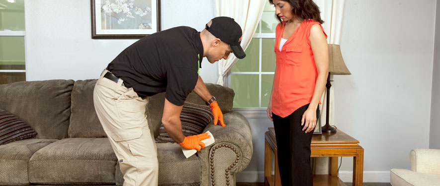 Somerset, KY carpet upholstery cleaning